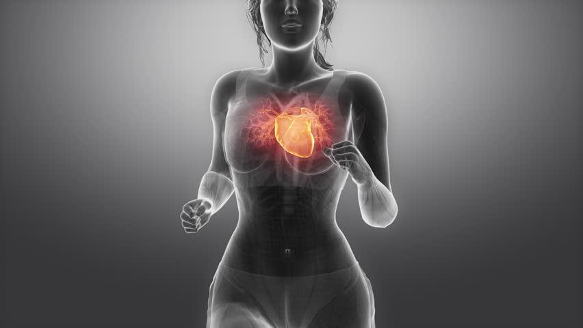 Dr Lee Romer Respiratory influences webinar